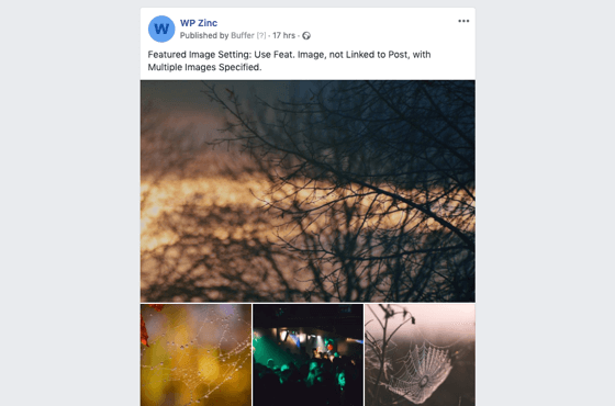 WordPress to Buffer Pro: Multiple Images