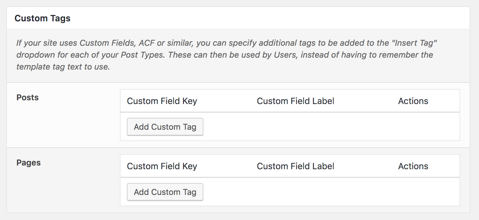 WordPress to Buffer Pro: Settings: Custom Tags