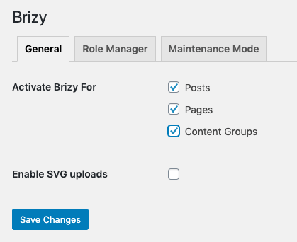 Page Generator Pro: Page Builders: Brizy: Settings